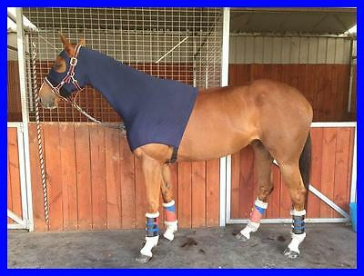 LOVE MY HORSE Lycra Skinny Show Hood Mane Plait Protection Blue + Zipper - Small
