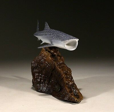 NEW WHALE SHARK Statue Direct from JOHN PERRY 9 in long Figurine on Wood