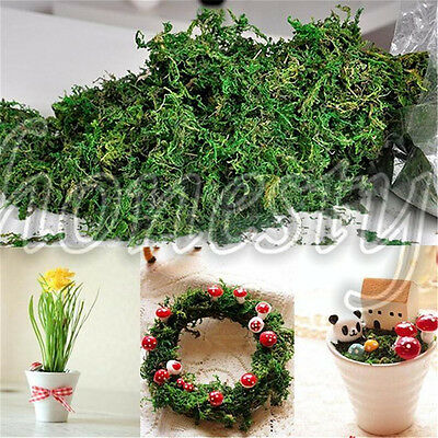 50~250g Artificial Reindeer Moss Plant For Flower Hanging Basket Lining Decor