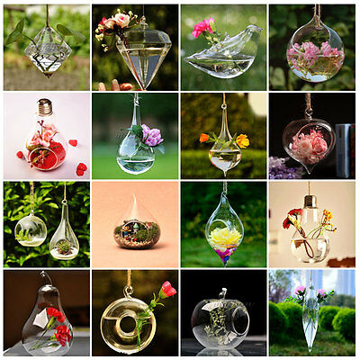Hanging Glass Plants Flower Vase Terrarium Container Home Party Decor Wedding