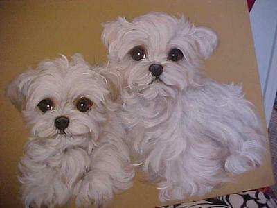 Find Your  Maltese Puppies For Life ! Original Painting Best Puppies On Ebay!