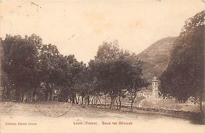 CPA 20 CORSE LEVIE SOUS LES OLIVIERS (cpa rare