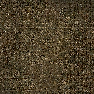 2ftx2ft PVC game mat ideal for D&D roleplay dungeons & dragons Exclusive design