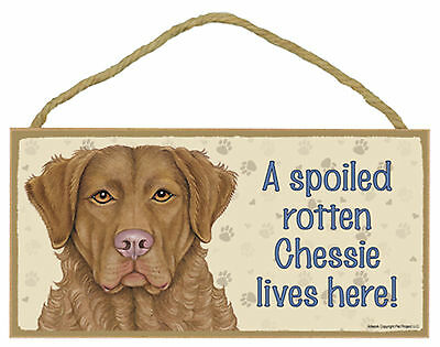 A spoiled rotten Chessie lives here! Dog Wood Sign Plaque - Made in USA - NEW