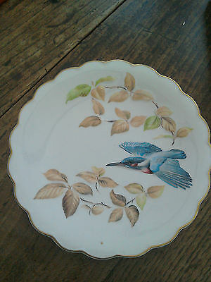 Worcester  Dorothy Doughty Kingfisher and Beech plate. Boxed + certificate