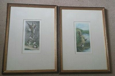 A pair of fabulous antique hunting prints with Spaniels. By M. Moisand