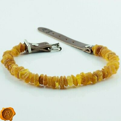Lab tested ALL SIZES raw Baltic amber pet collar amber dog cat tick flea collar