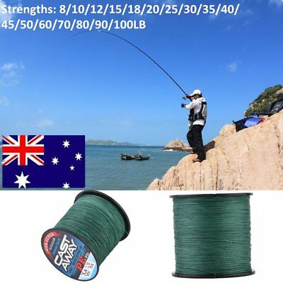 300M Braid Fishing Line For Lake Ocean Beach Fishing 8LB-100LB PE Material New