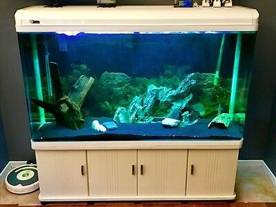 Aquarium / Fish Tank. 500+ Litre - LED Light With Canister Filter