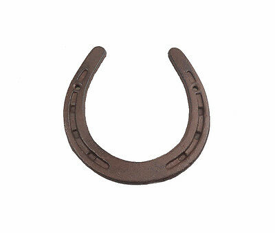 Lucky Horseshoe Cast Iron 5.5 x 5.5 inches Good Luck New Home