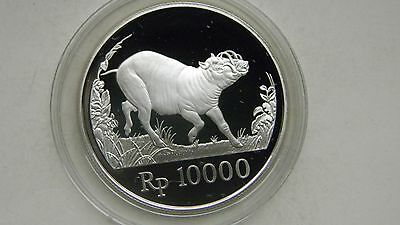 1987 Indonesia 10000 Rupiah Babirusa Silver Proof coin