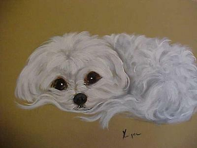 Find Your Maltese  Resting On His / Her Tail Original Painting