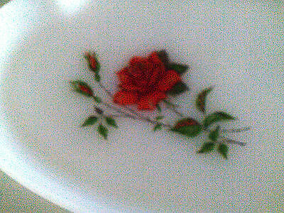 Lot of 3 Federal snack plates with roses-milk glass