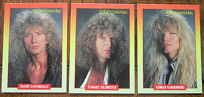 lot of 49 photo cards WHITESNAKE Yes DEEP PURPLE Junkyard TANGIER cd album lp