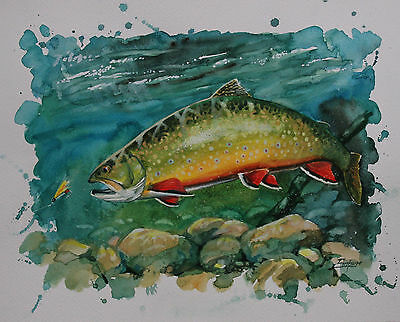 Brook Trout print from original painting by Patrick Soper