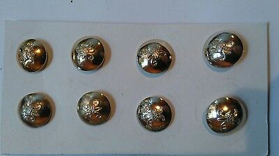 Womens Royal Army Corps Buttons