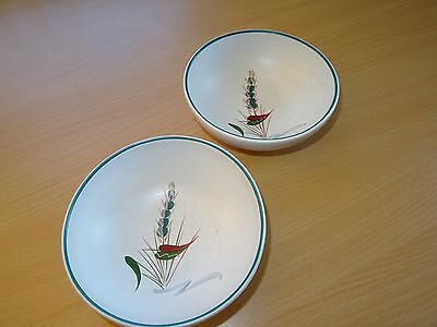 2 x DENBY Greenwheat Cereal Bowls