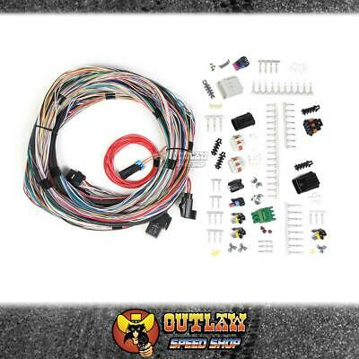 HOLLEY EFI Universal Unterminated Main Engine Harness - HO558-105