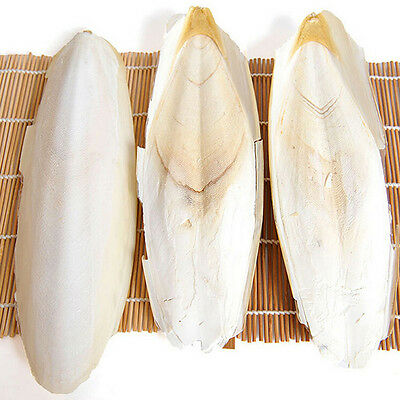 2X Cuttle Fish Cuttlefish Bone For Pet Budgie Birds Reptiles Tortoise Food Best