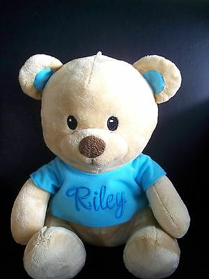 Personalised Teddy Bear  Any Name  Baby Gift or Birthday Get Well Gift 25cm