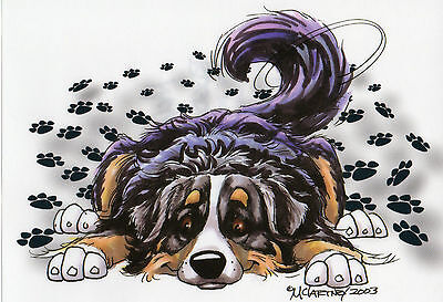 Decal VW Bernese  Mountain Dog by Mike Mccartney