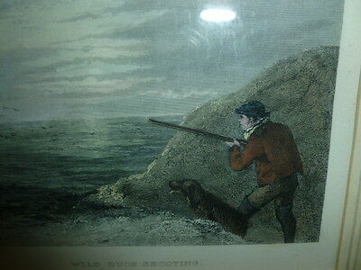 Vintage antique framed 19th century copper plate print of hunting shooting scene