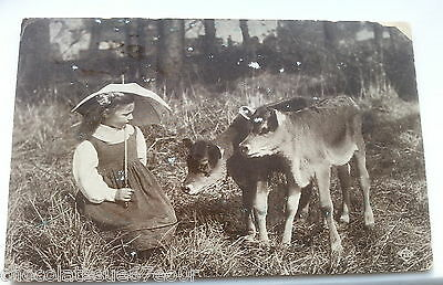 Rare Vintage Girl & Jersey Cow Calves Old Printed Photo Postcard Valentines 1917