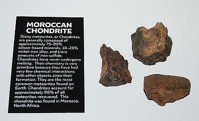 MOROCCAN Stony METEORITE Chondrite Lot of 3 Pieces - 91.5 grams total #2494 6o