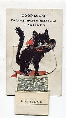 Hastings Pull Out Lucky Black Cat (1920's)
