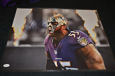 Terrell Suggs signed Ravens 16x20 Photo JSA Certified