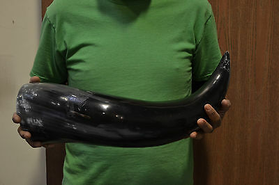 Very Large Polished Real Buffalo Horn Medieval Viking Cup #8068Hh
