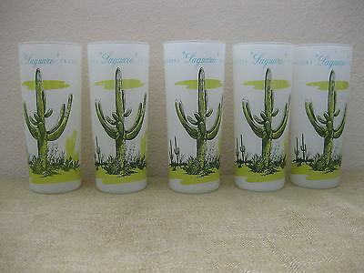 Lot Of 5 Vintage Blakely Oil Arizona Saguaro Cactus Tall Frosted Glasses