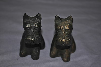~~  2  Vintage Cast Iron Scotty Dogs Scottish Terriers Very Nice Condition ~~