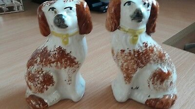 A Pair Of Staffordshire Dogs Small