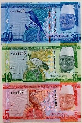 GAMBIA 2015 5 10 20 Delasies GREAT COLOURFUL UNCIRCULATED BANKNOTES NEW DESIGN