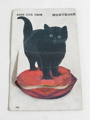 Antique Black Cat Fold Out Good Luck From Montrose Postcard Valentine's