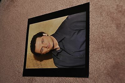 Matthew Rhys - Brothers & Sisters - Signed Photo/autograph - 10 X 8