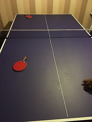 Full Size Butterfly Table Tennis Table