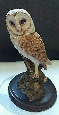 country artists owl
