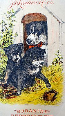 Victorian Trade Cards 1882 Dated JD Larkin Boraxine Hand Soap Dog Puppies