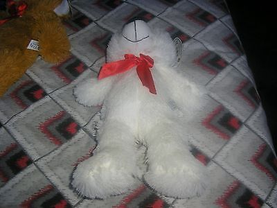 White soft teddy bear new