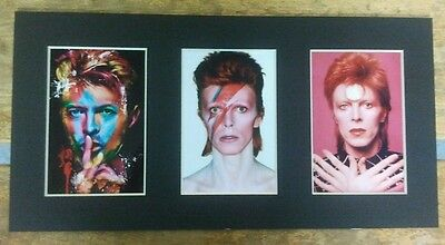 David Bowie Exclusive 3 Photo Picture Frame