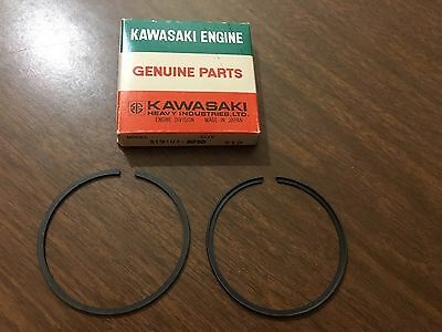 Arctic Cat 1972 Ext 292 Piston Rings 3000 652 Vintage 6700