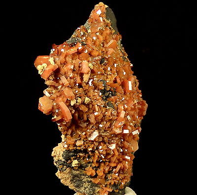 VANADINITE nice red crystals !!! MOROCCO Mibladen - CLASSIC !!! /kt629