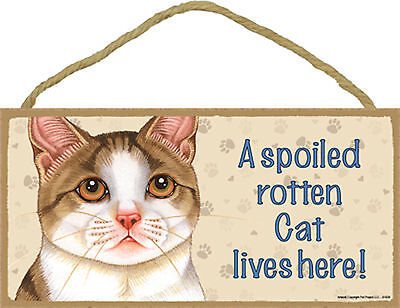 Tan and White Cat A spoiled rotten Cat lives here! Wood Sign Plaque USA Made NEW