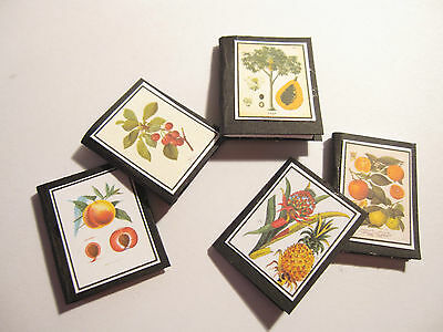 5 Dolls House Miniature Vintage Fruit Botanical  Books Set 1