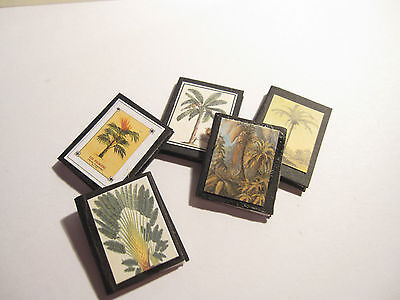 5 Dolls House Miniature Vintage Palms Botanical  Books Set 1