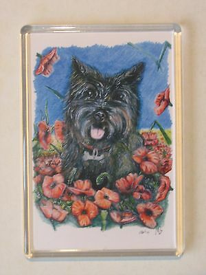 Fridge Magnet 9.5cm x 6.5cm artwork print black Cairn Terrier dog with poppies
