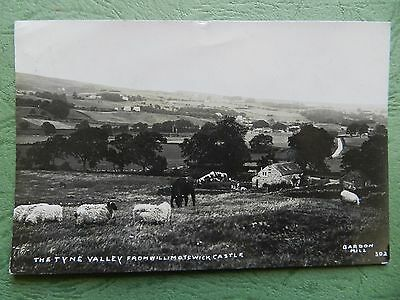 Vintage Rp Postcard - The Tyne Valley From Williamotswick Castle , Bardon Mill