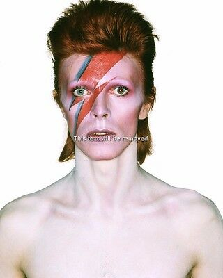 DAVID BOWIE Glossy 8X10 PHOTO PICTURE PRINT 3155